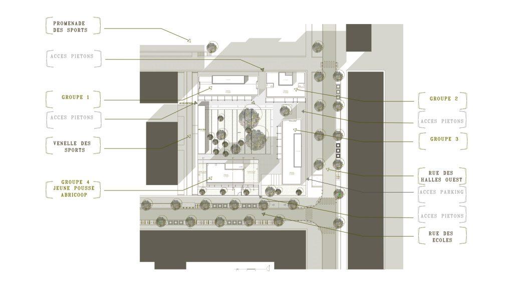La Jeune Pousse / Abricoop - plan de masse 1 500 - Seuil architecture