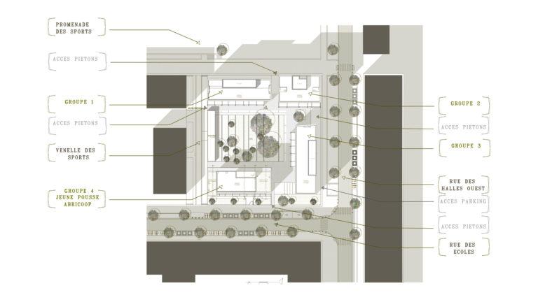 Habitat participatif - Abricoop - plan de masse 1 500 - Seuil architecture