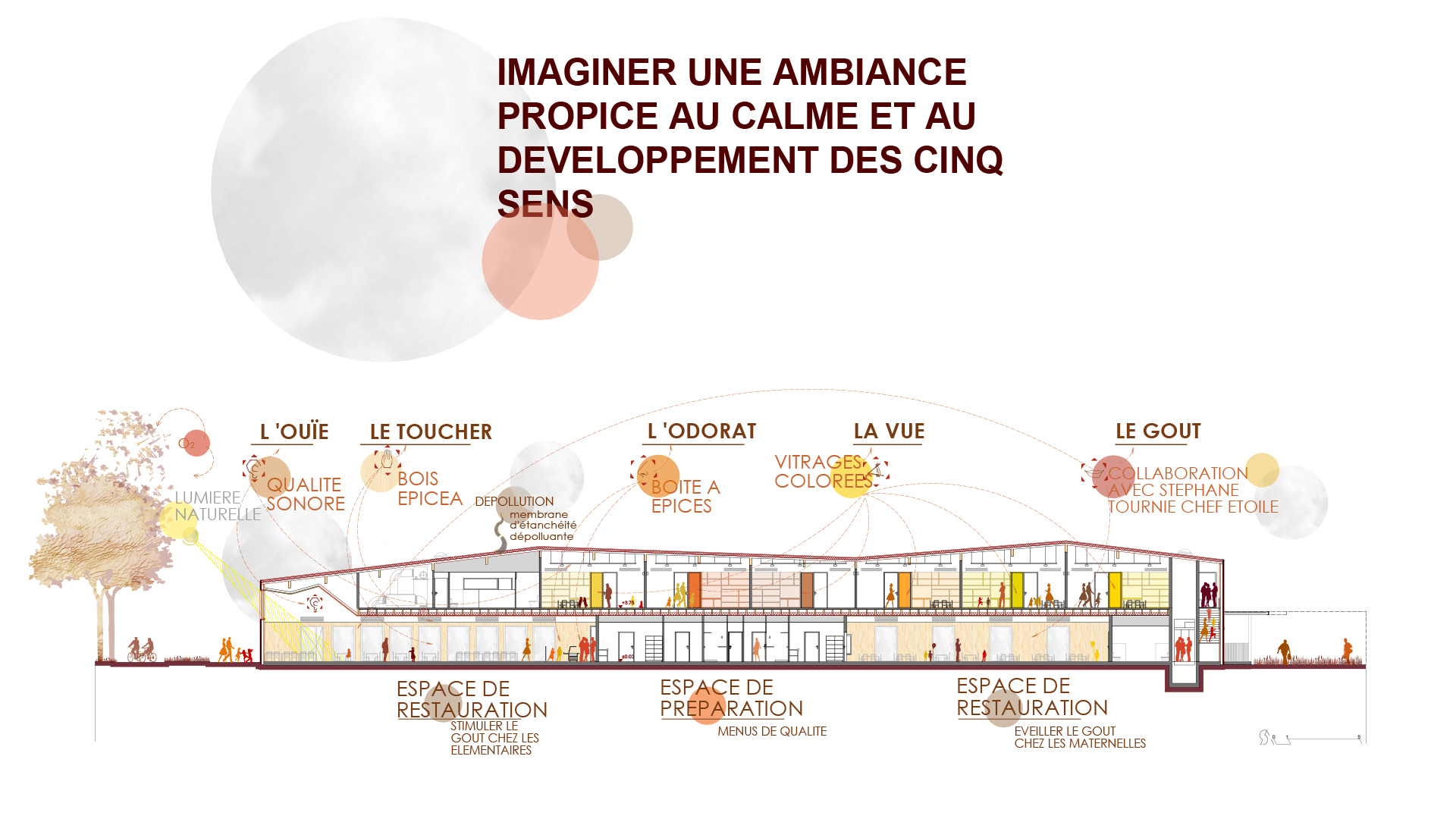 Infographie - Coupe bioclimatique et 5 sens - Groupe scolaire Falcucci, Toulouse - Seuil architecture