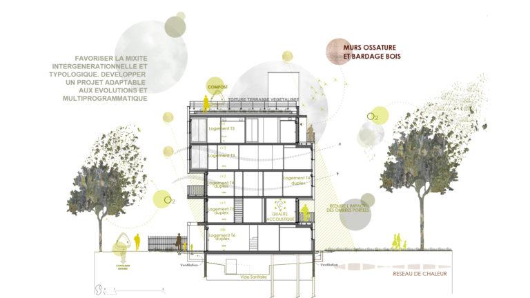 Habitat participatif Abricoop - Coupe bioclimatique - Seuil architecture