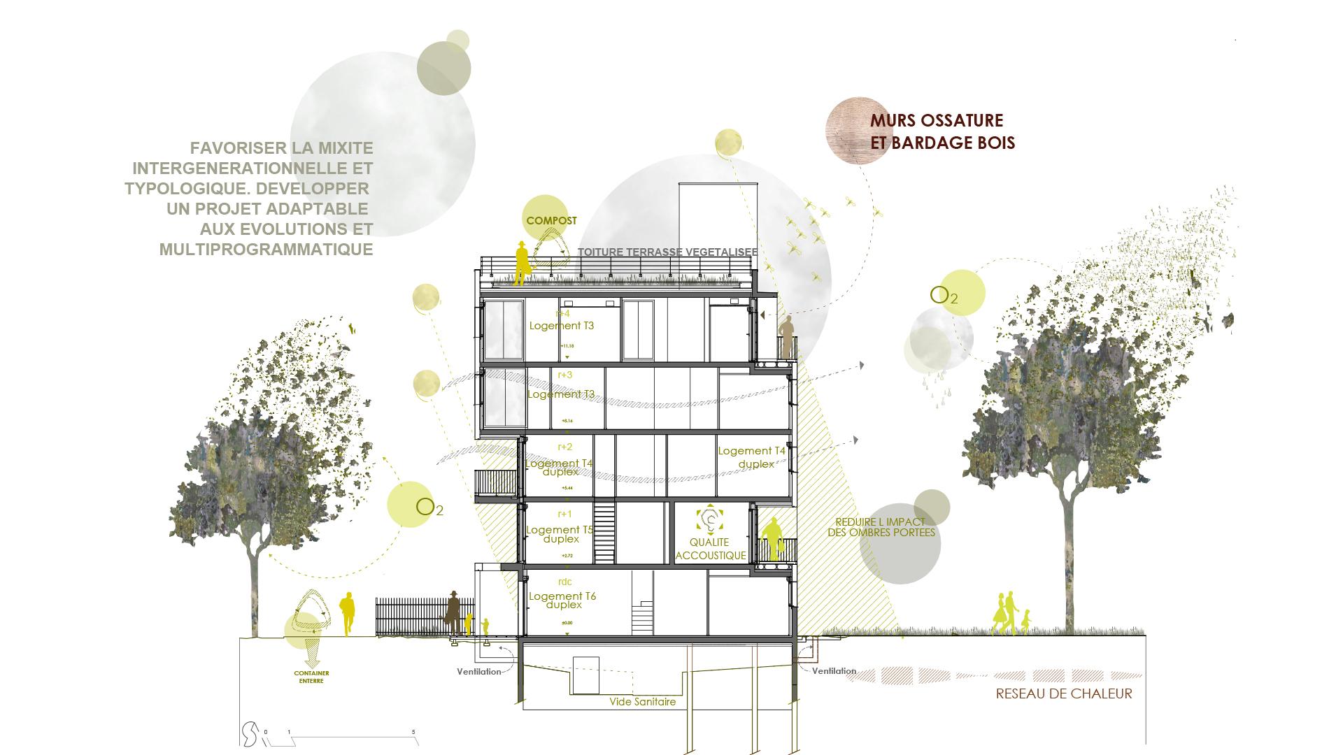 La Jeune Pousse / Abricoop - Coupe bioclimatique - Seuil architecture