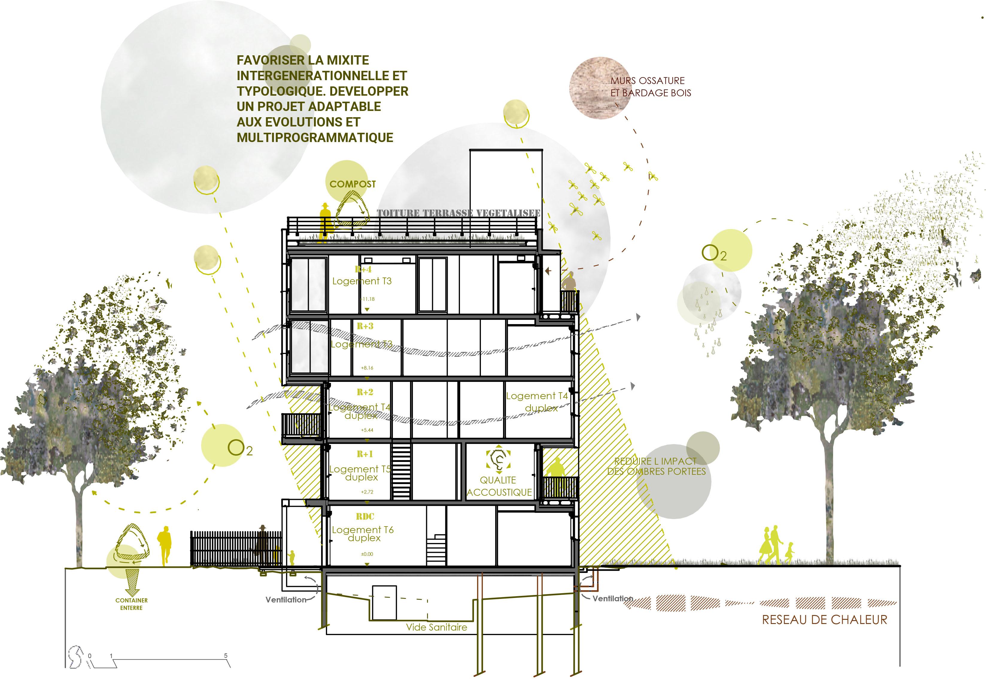 Coupe bioclimatique de l'immeuble de logements coopératifs Abricoop à Toulouse, quartier La Cartoucherie