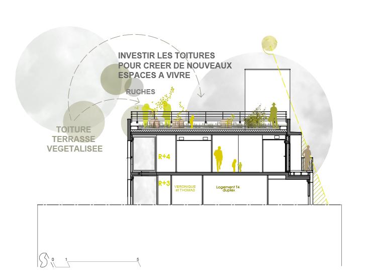 La Jeune Pousse / Abricoop - Vue sur la toiture jardin accessible - Coupe bioclimatique - Seuil architecture